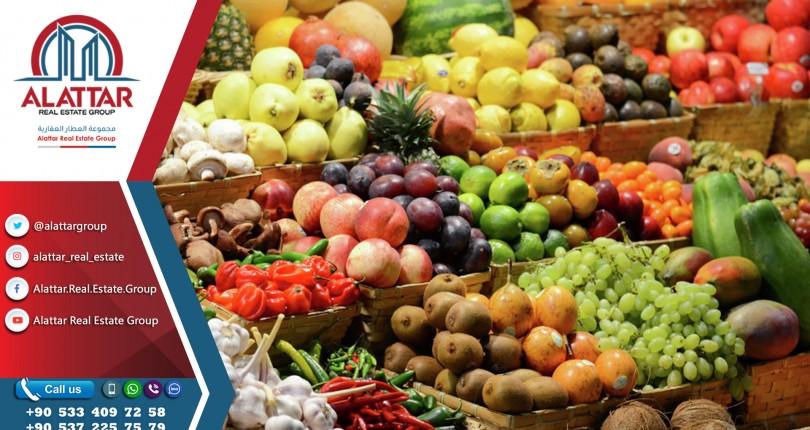 صادرات المواد الغذائية التركية إلى الولايات المتحدة تقترب من مليار دولار